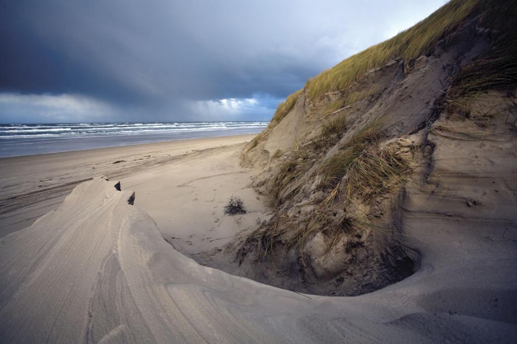 Песчаные дюны на Фризских островах