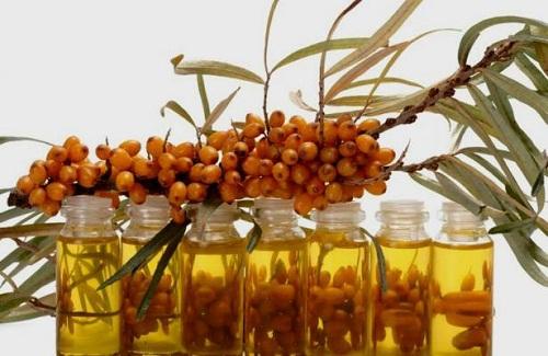 масло и ягоды облепихи