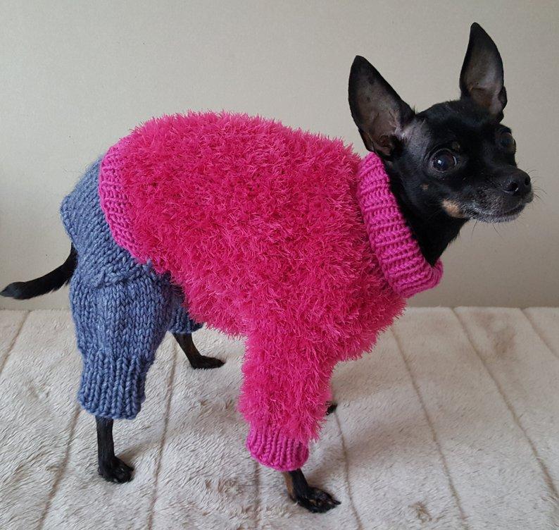 комбинезон для собаки