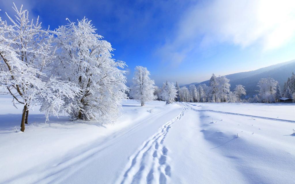 """От слова """"зима"""""""