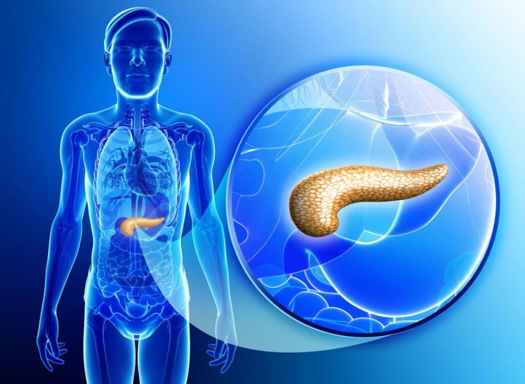 ожирение поджелудочной железы диета