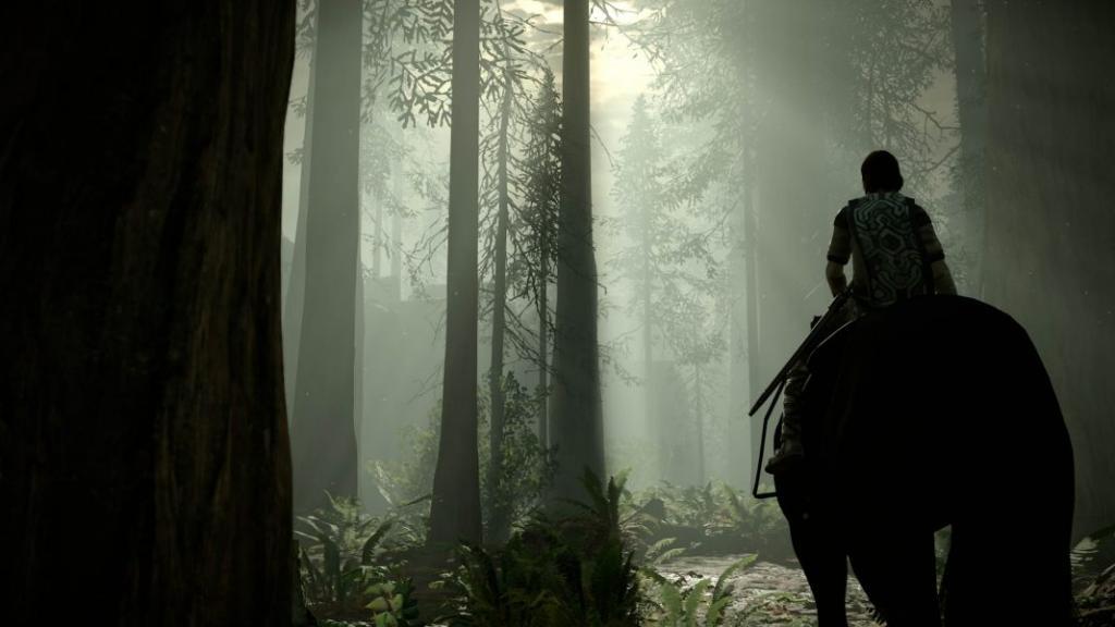 Всадник в лесу.