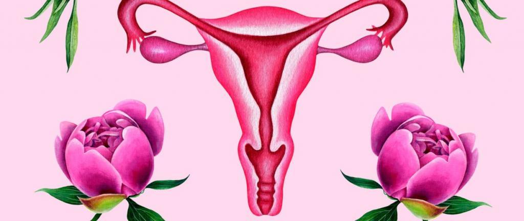 Что значит «короткая шейка матки»?