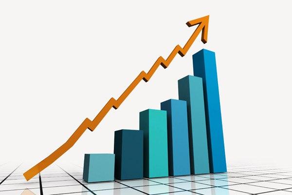 статистические категории в статистике
