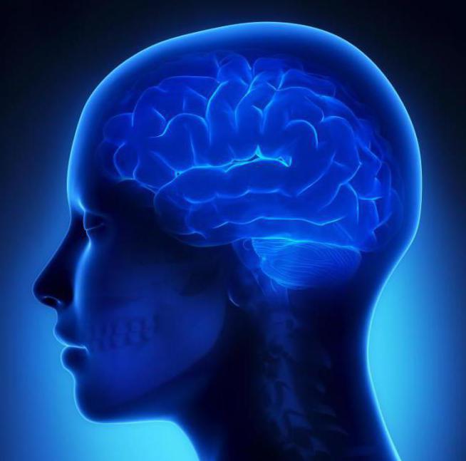очаги сосудистого генеза в мозге