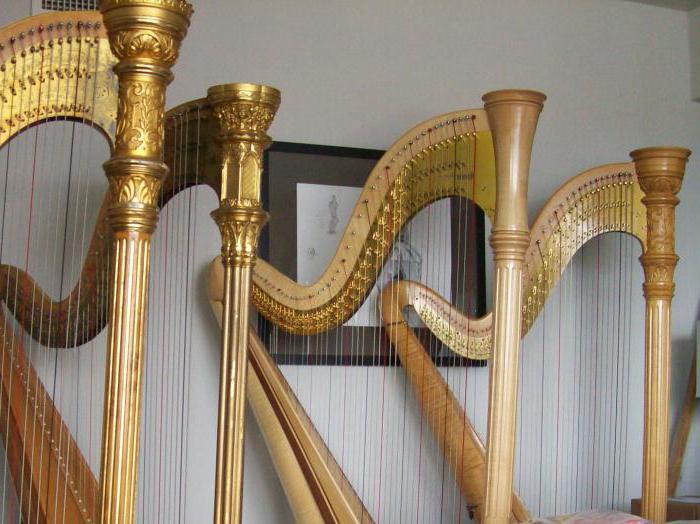 щипковый музыкальный инструмент