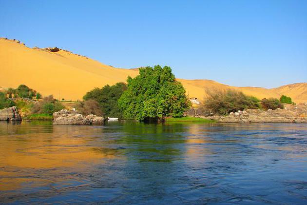 в каком направлении течет река нил