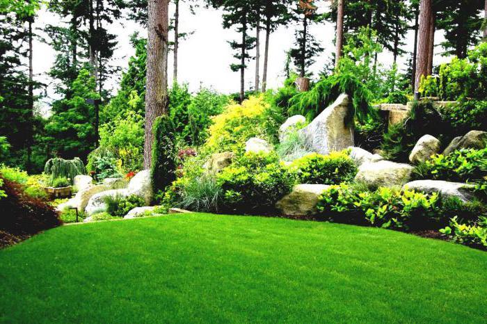 садово парковое и ландшафтное строительство специальность