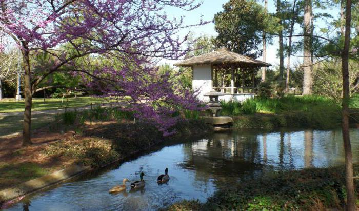 садово парковое и ландшафтное строительство работа