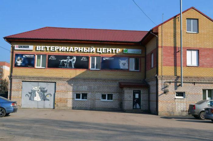 ветеринарные клиники в Пскове адреса