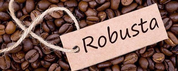 что полезнее кофе или зеленый чай