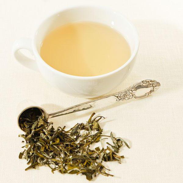 что полезнее пить чай или кофе