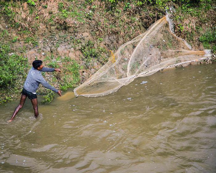 ловля небольшой сетью на реке