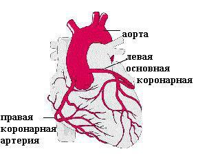 давит в груди