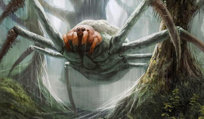 паук людоед в горах кавказа