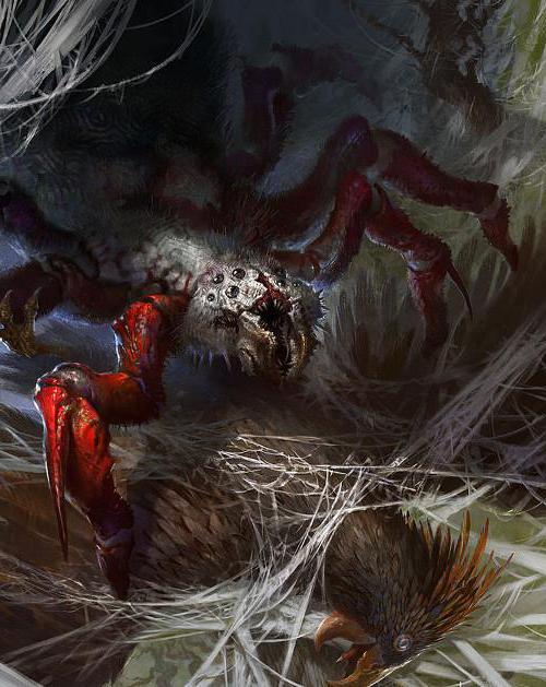 пауки людоеды в кабардино