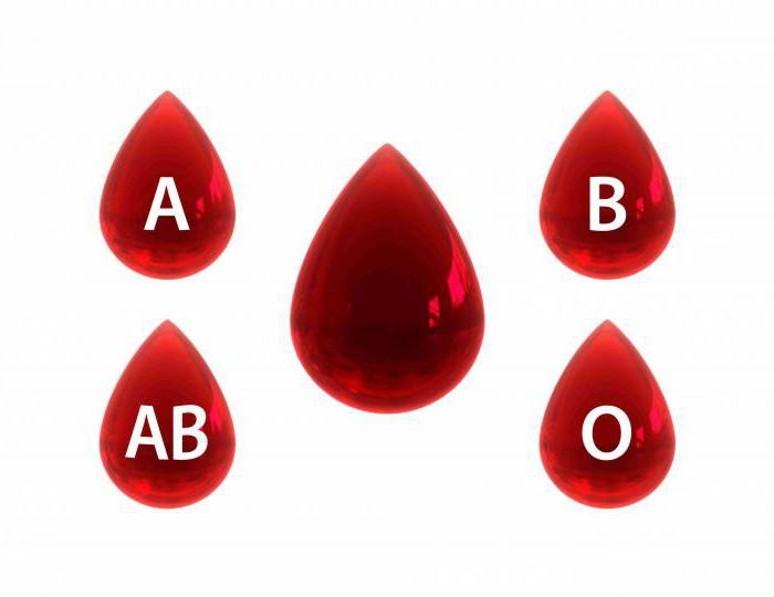 определение группы крови системы аво перекрестным способом