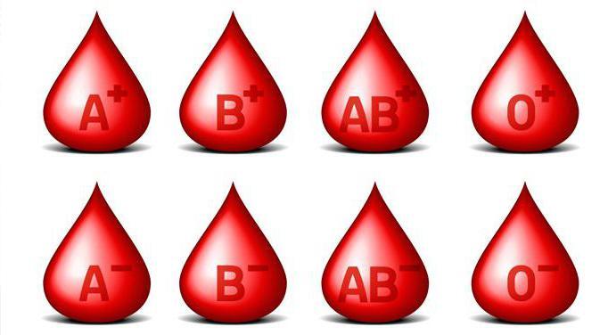 определение групп крови по системе аво с помощью цоликлонов