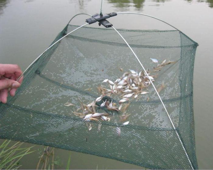 рыболовная снасть паук для рыбалки