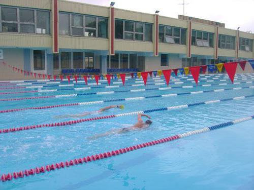 таганрог открытый бассейн дельфин