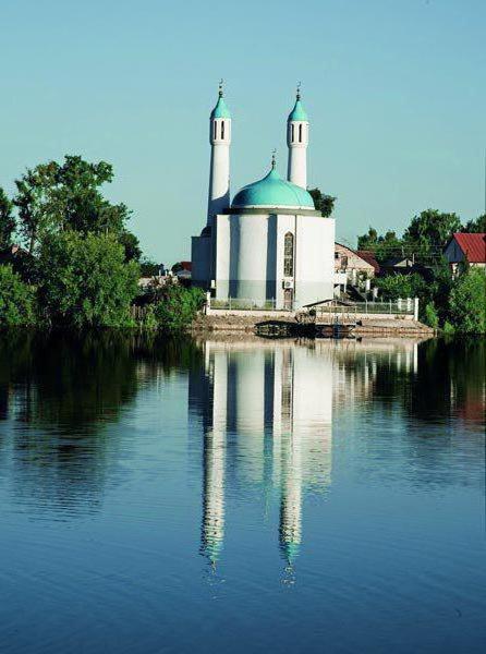мечеть шамиль на борисково