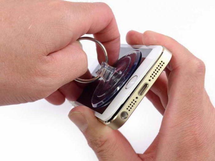сколько стоит заменить стекло на айфоне 5