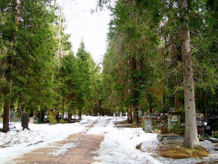 Комаровское кладбище под Санкт-Петербургом