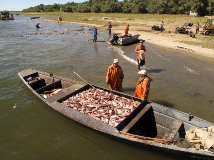 рыбалка калязин