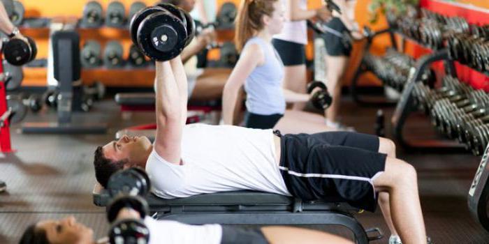 принципы спортивной тренировки представляют собой