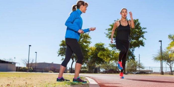 основные принципы спортивной тренировки