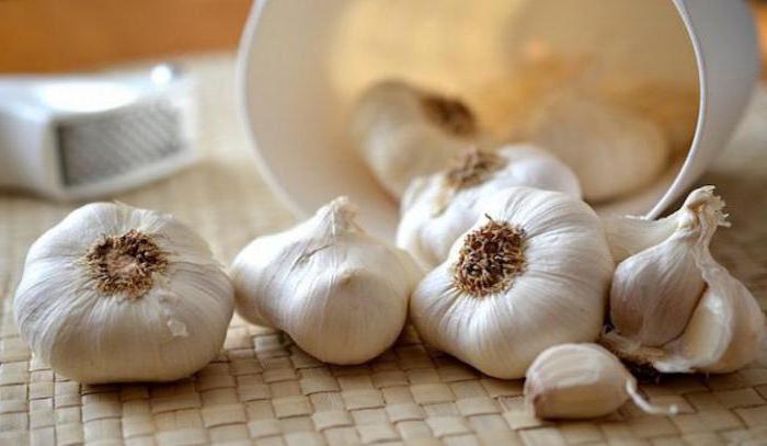 подкормки для лука и чеснока