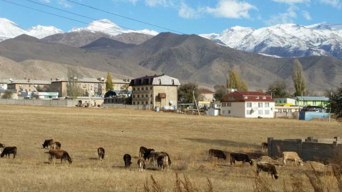 Чолпон ата киргизия