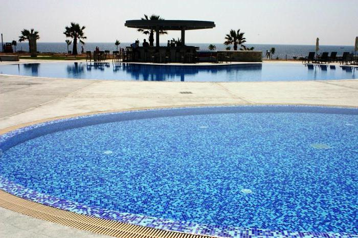 amphora hotel suites 4 кипр пафос отзывы
