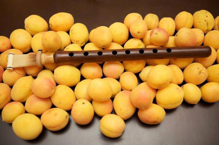 сорт армянских абрикосов