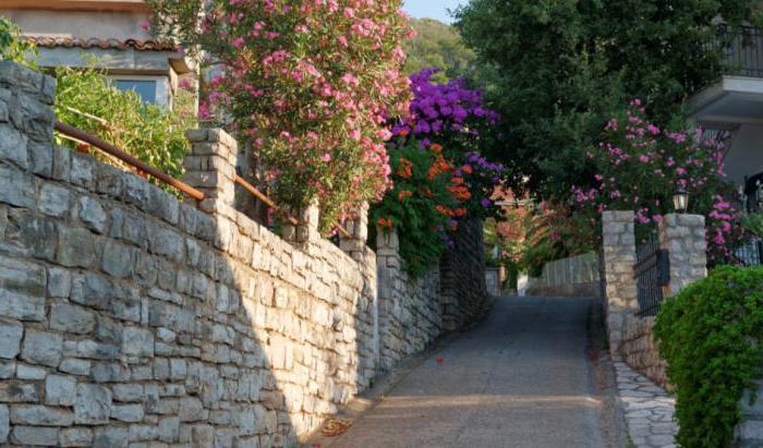 villa millica 3 черногория