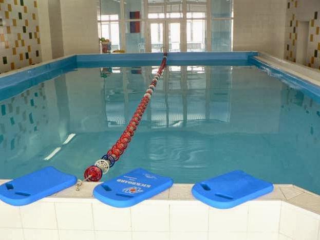 бассейн дельфин фото
