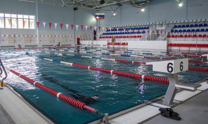 бассейн олимпийский орел