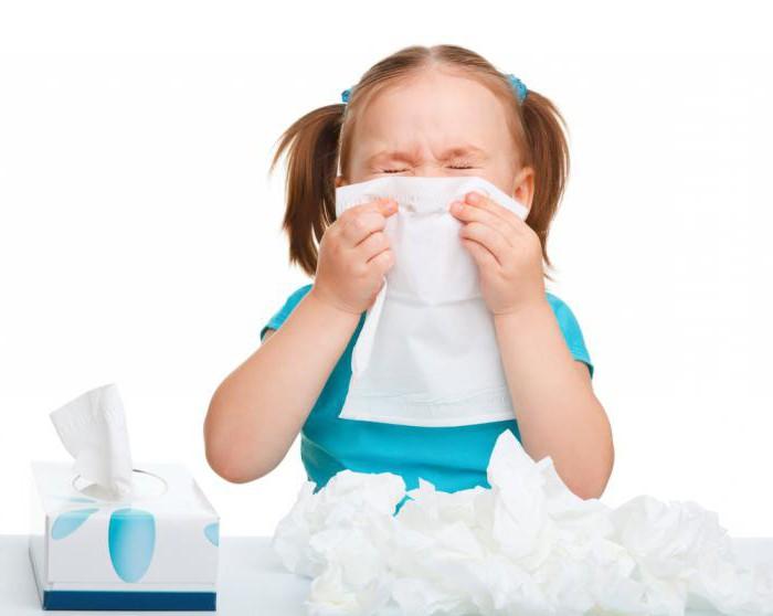 есть ли аллергия на сфинксов