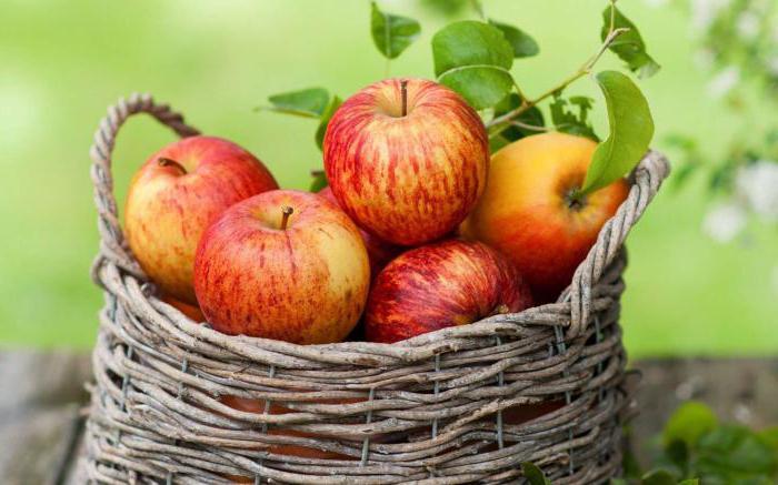фрукты вызывающие аллергию у детей
