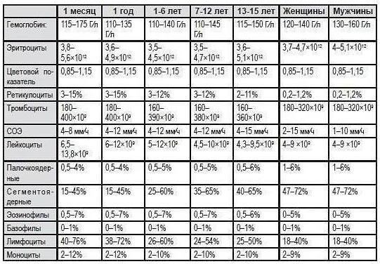 wbc в анализе крови норма