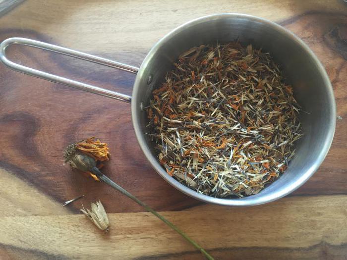 как собрать семена бархатцев в домашних условиях