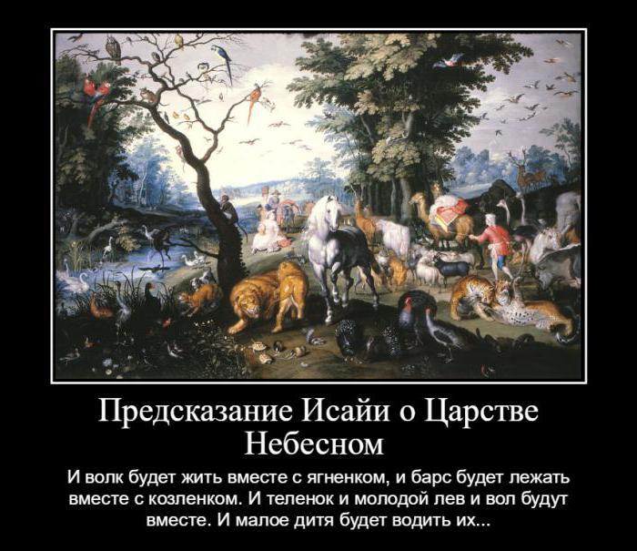 есть ли душа у животных православие