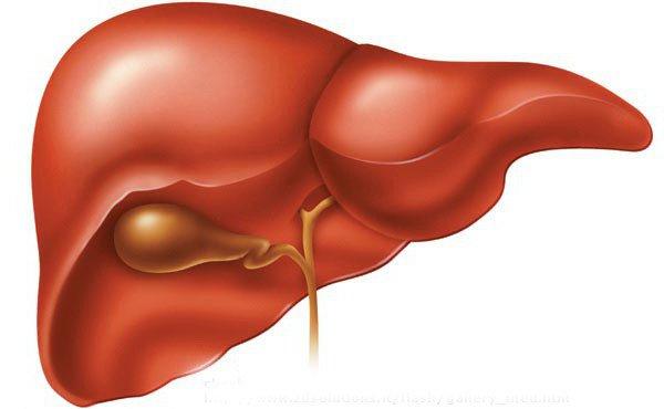 гептор 400 мг показания к применению