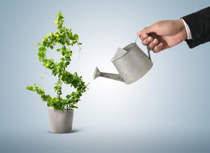 программа кредитования малого бизнеса