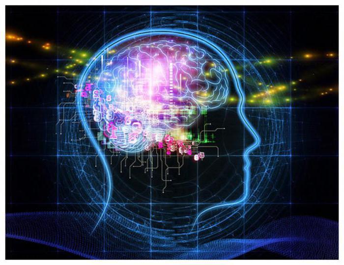 обзор способов улучшить память ребенка
