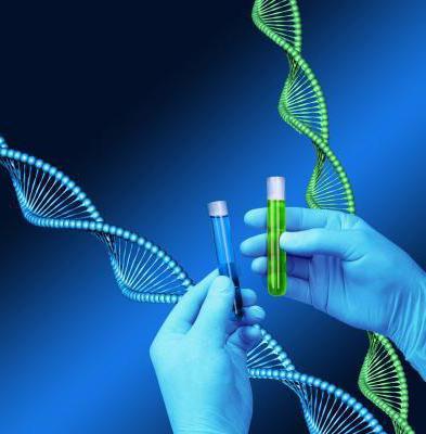 обследование на мутации генов системы гемостаза