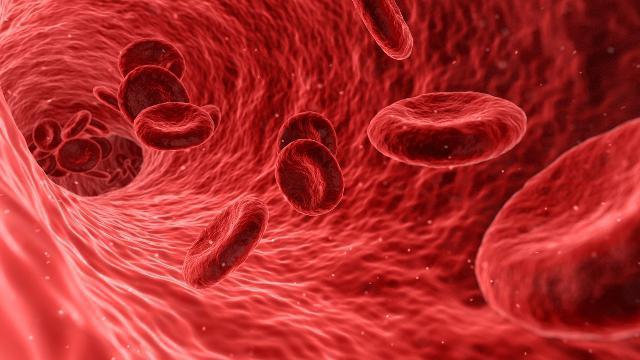 мутация генов гемостаза и беременность