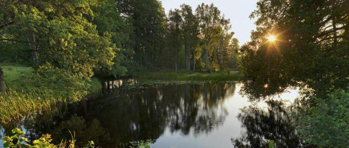 отель тихое озеро ольгинская