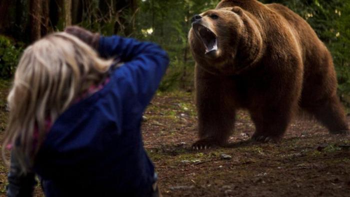 Ридер скачать выживание в дикой природе встреча с медведем соответствии этим