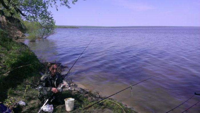 Смотрите интересные отчеты о рыбалке: